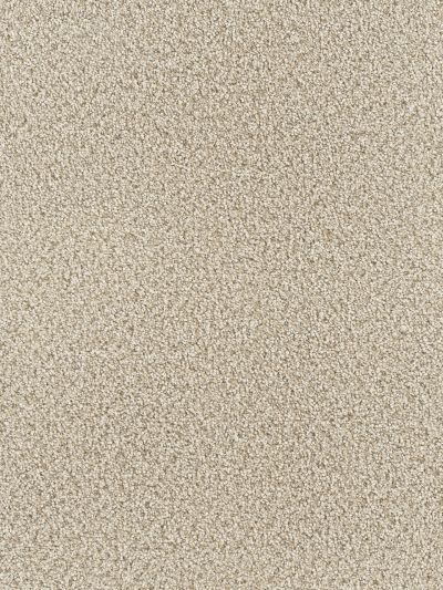 Dream Weaver West Brow Desert Jasper 6035_339