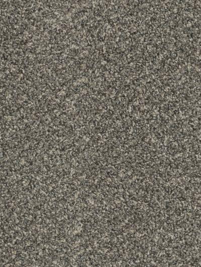 Dream Weaver SP250 Ironside SP250-783
