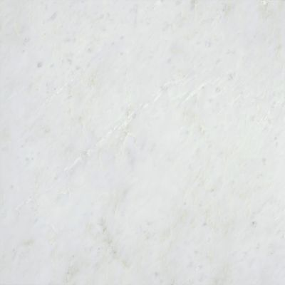 Emser Marble Winter Frost Marble Polished Winter Frost M05WINTFR1818C