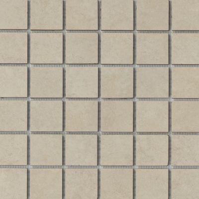 Emser Baja Ceramic Matte/Satin Rosarito F22BAJARO1313MO2