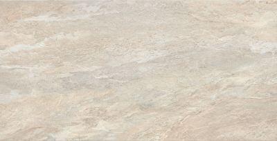 Emser Milestone Porcelain Matte/Satin Dust F86MILEDU2447