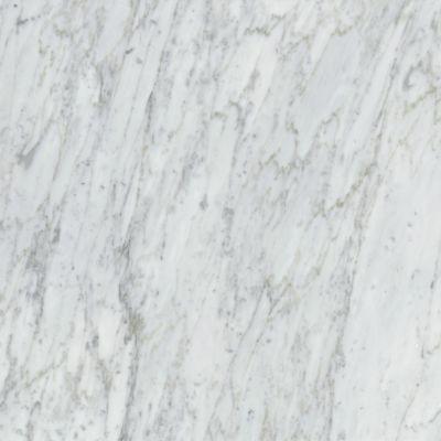 Emser Marble Bianco Gioia Marble Polished Bianco Gioia M01BIANGI2424