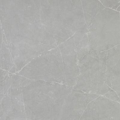 Emser Sterlina Porcelain Polished Gray F13STERGR2424P
