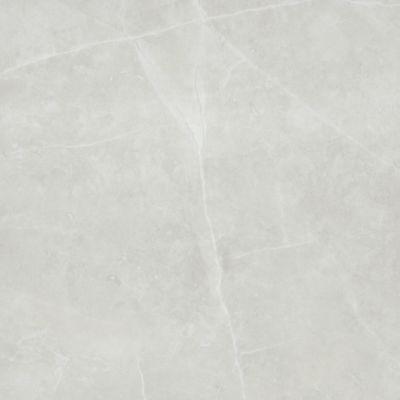 Emser Sterlina Porcelain Matte Silver F13STERSI2424M