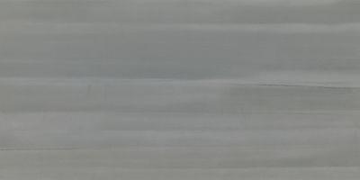 Emser Silhouette Porcelain Matte Shadow F02SILHSH1224
