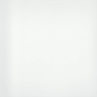 Emser Style II Porcelain Polished Pure White F04STYLWH2424P