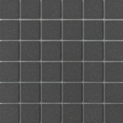 Emser Source Porcelain Matte Black Salt/Pepper W71SOURBKSP1212MO2