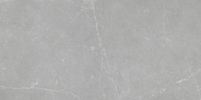 Emser Sterlina Porcelain Polished Gray F13STERGR0612P