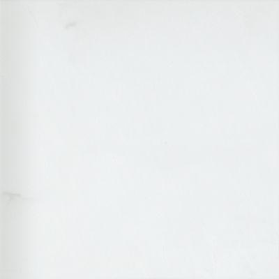 Emser Marble Thassos White Marble Honed Thassos White M10THASWH2424
