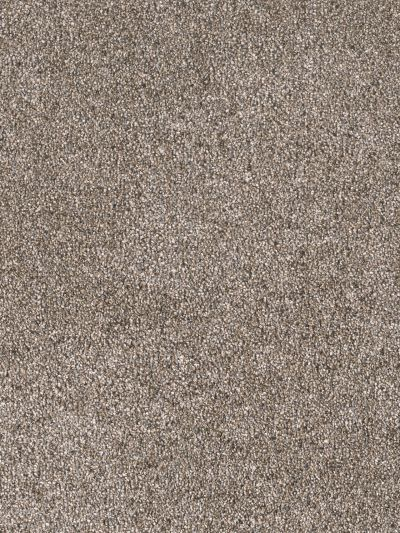 Dream Weaver Easy Living III Tahiti Taupe 7065_15