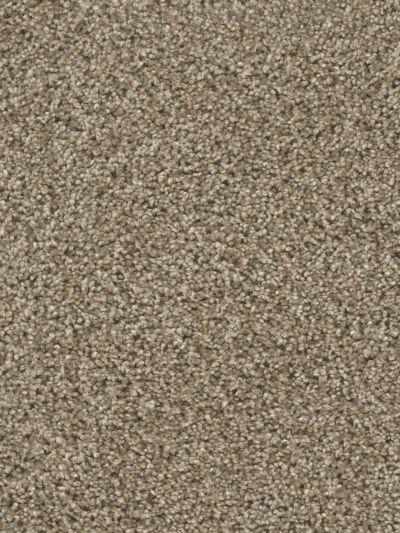 Dream Weaver Reflections II Sand Bluff 5365_440