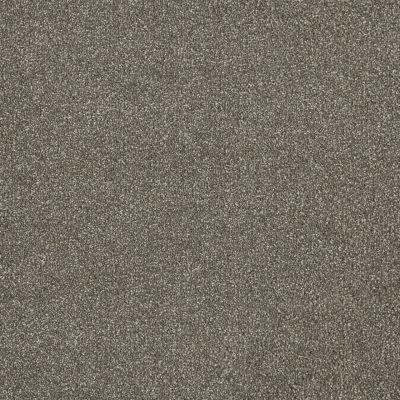 Dream Weaver Malibu III Cinnamon Tea 3760_528