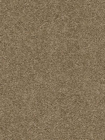 Dream Weaver Windsurf II Sable 3360_510
