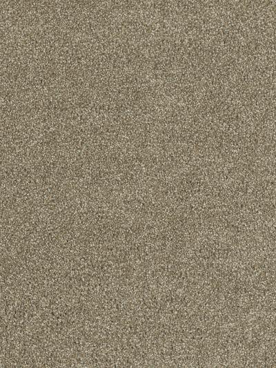 Dream Weaver Hollywood Sienna Sand 8232_680