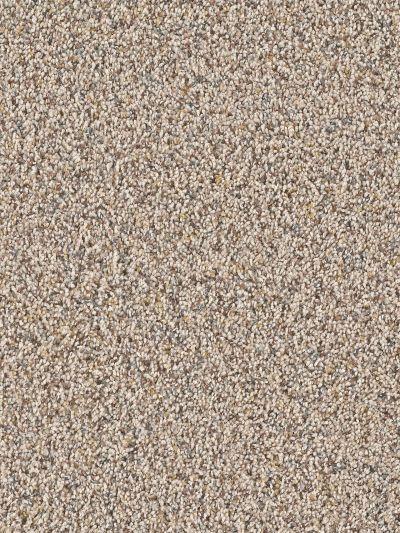 Dream Weaver Mardi Gras Sandpoint 4090_724