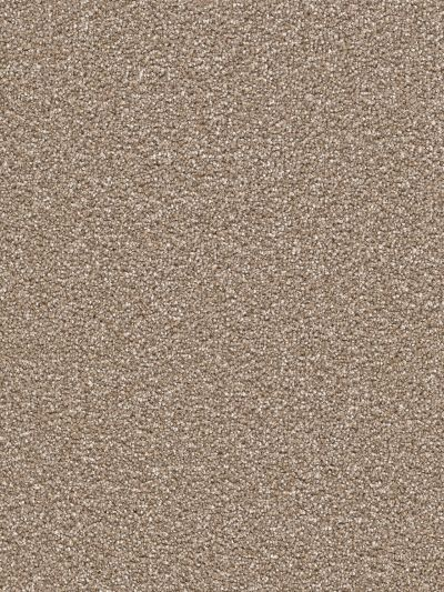 Dream Weaver Cape Cod Acorn 2540_-858