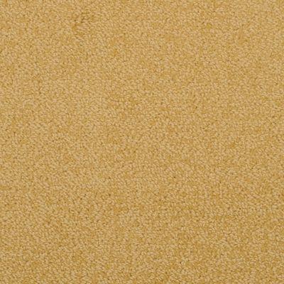 Masland Novellino Golden 9215377