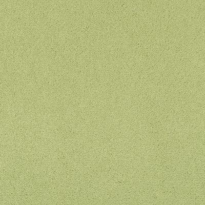 Masland Cache Spearmint 9408729