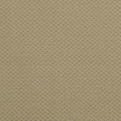Masland Seurat Plaster 9440568