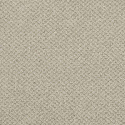Masland Seurat Mist 9440605