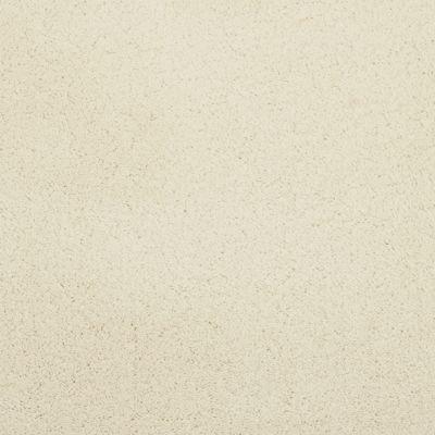 Masland Posh Lace 9455050