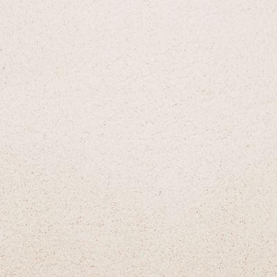 Masland Posh Opalescence 9455200
