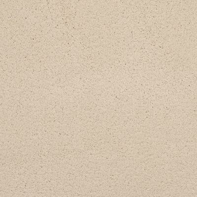 Masland Posh Fashionable 9455508