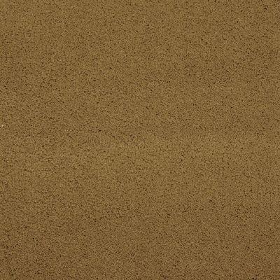 Masland Posh Sable 9455650