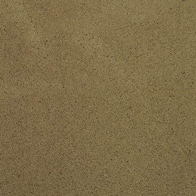 Masland Posh Exclusive 9455654