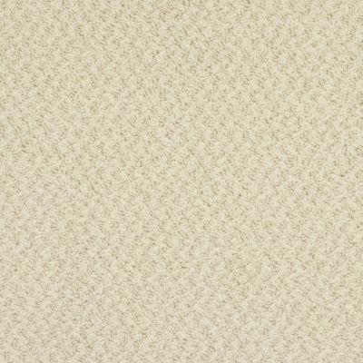 Masland New Hope White Swan 9478098