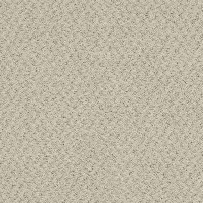 Masland New Hope Parchment 9478828