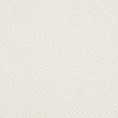 Masland Montauk Sea Spray 9479048