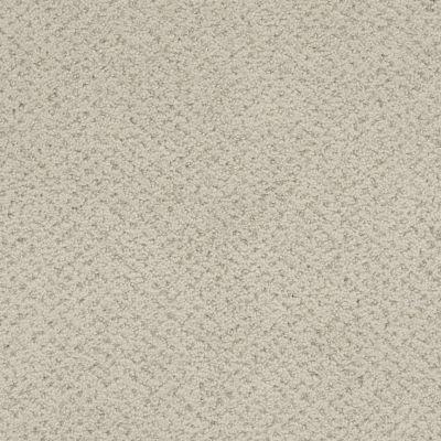 Masland Montauk Pebble 9479828