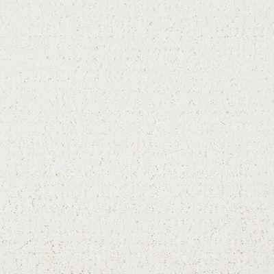 Masland Matisse Silver Sequin 9493036