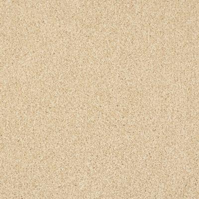 Masland Oceanside Pale Almond 9495516