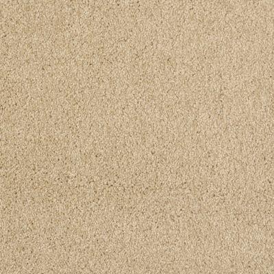 Masland Oceanside Low Tide 9495551