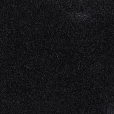 Masland Miami Darkside 9496115
