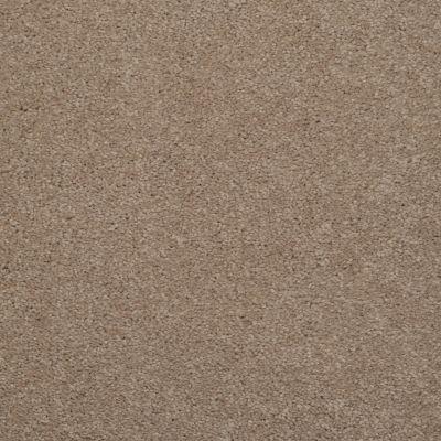 Masland Embrace Bandicoot 9501325