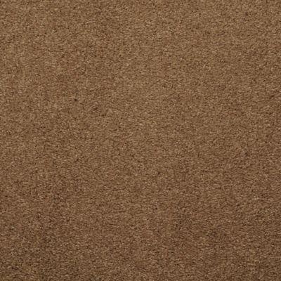 Masland Embrace Barley 9501715