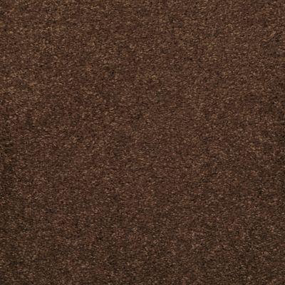 Masland Embrace Bison 9501734