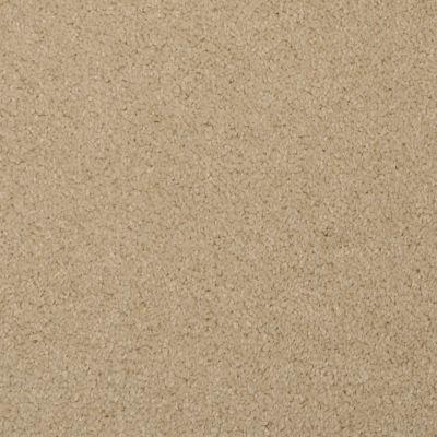 Masland Softly Stated Vanilla 9502218