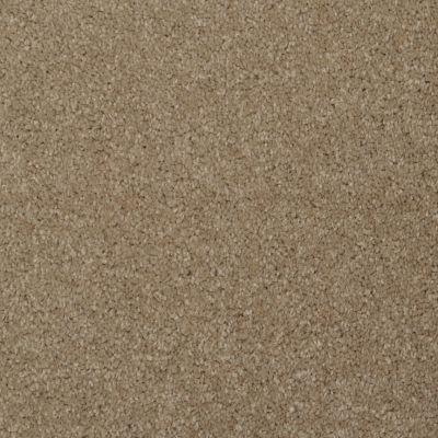 Masland Softly Stated Grullo 9502301