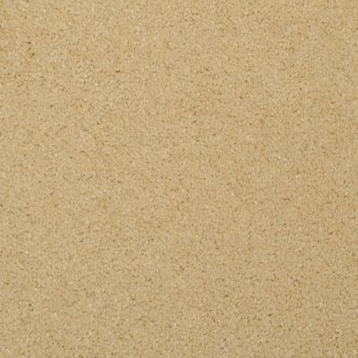 Masland Softly Stated Sunglow 9502433