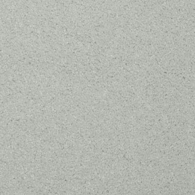 Masland Softly Stated Skeptic 9502521