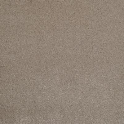 Masland Silk Touch Muffet 9515212
