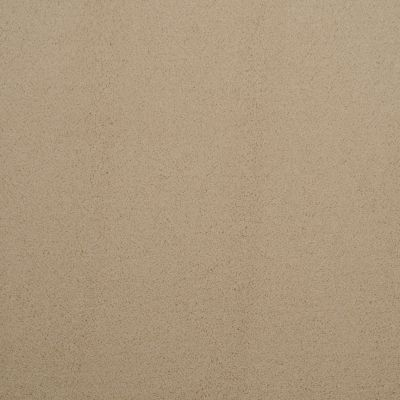 Masland Silk Touch Tinged 9515247