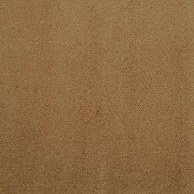 Masland Silk Touch Torbay 9515323