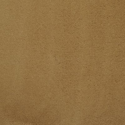 Masland Silk Touch Maple 9515424