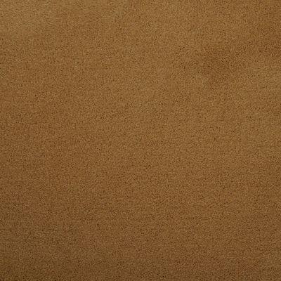 Masland Silk Touch Sun Catcher 9515440