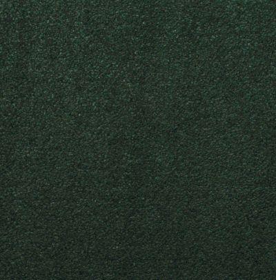 Masland Silk Touch Windemere 9515549
